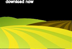 Tả cánh đồng lúa
